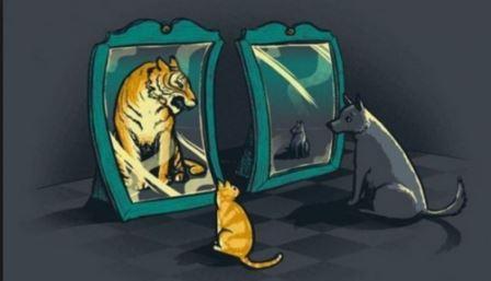 кот смотрит в зеркало и видит льва, собака в зеркале видит щенка